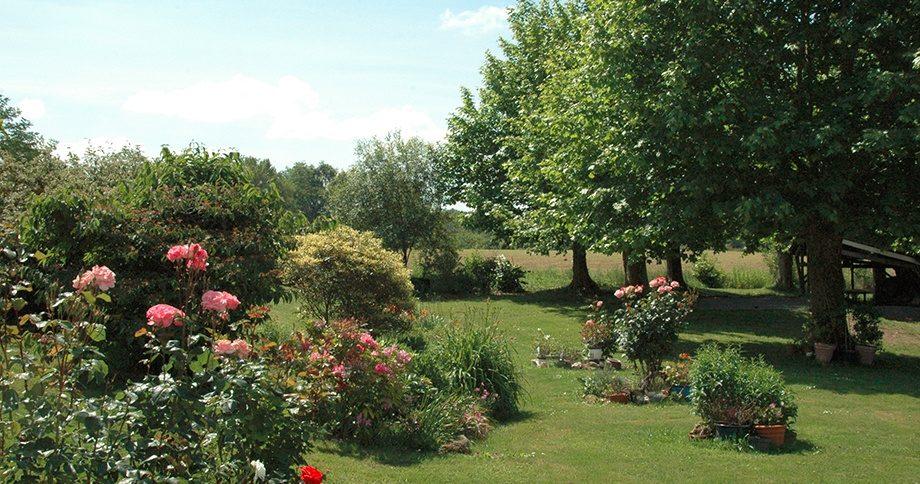 Gite dans les Landes pas cher, Location maison de vacances Landes, Location curiste Dax, Gite Landes avec jardin